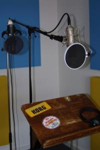 Gesangsmikrofon Hersteller