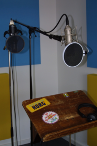Mikrofon Frequenzgang
