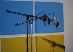 Mikrofon einpegeln Unterschiede
